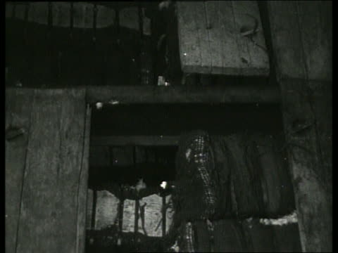 b/w bales of cotton in ship's hold / 1910 new orleans / no sound - 1910 stock-videos und b-roll-filmmaterial