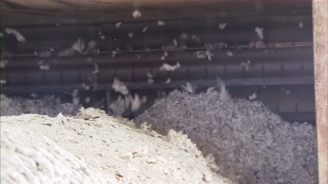 cu of bales of cotton moving through machine. - faser stock-videos und b-roll-filmmaterial