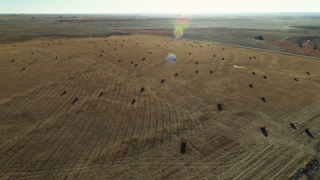 bales of hay in the harvested winter fields in kansas - kansas stock videos & royalty-free footage