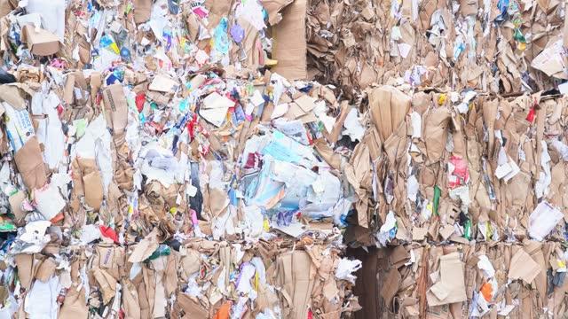 仕分けセンターでリサイクル可能な紙のベール - リサイクル素材点の映像素材/bロール