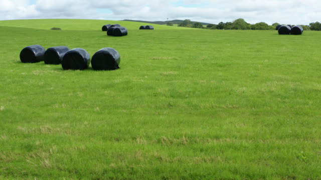 bales of silage or hay wrapped in black plastic in a field in rural dumfries and galloway, south west scotland - johnfscott stock videos & royalty-free footage