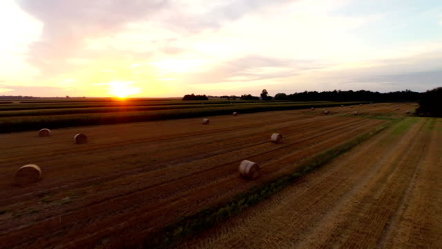 AERIAL Bales Of Wheat At Dusk
