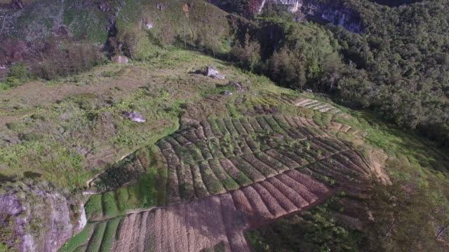 baliem valley wamena papua. - prehistoric era stock videos & royalty-free footage