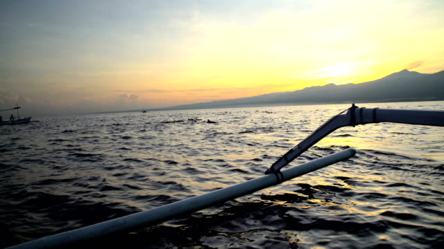 stockvideo's en b-roll-footage met balinese catamaran with tourists dolphin watching at sunrise - rugvin