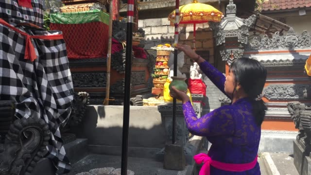 balinese woman giving religious offering, praying and celebrating galungan and kuningan holidays - hinduism stock videos & royalty-free footage