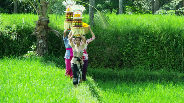 vídeos de stock e filmes b-roll de balinese women carrying fruit offerings hindu gods indonesia - benção