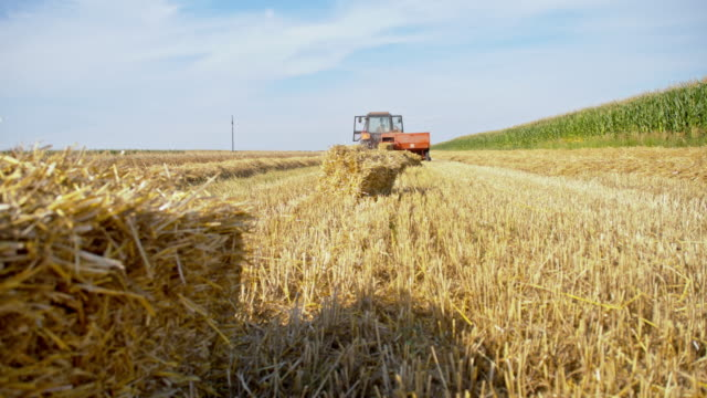 ws baling hay on the field - hay baler stock videos & royalty-free footage