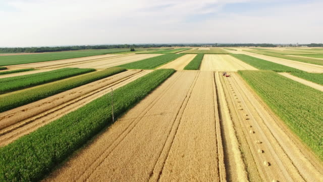 aerial baling hay on the field - hay baler stock videos & royalty-free footage