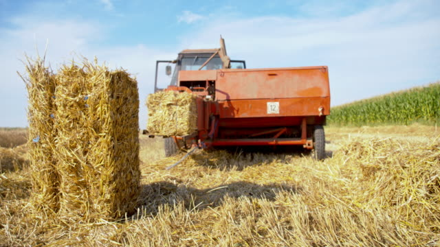 ws baling process - hay stock videos and b-roll footage