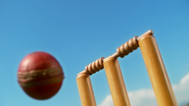 slo mo ball hitting the stumps and bails fall off - cricket video stock e b–roll