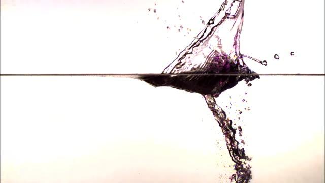 vídeos de stock, filmes e b-roll de a ball splashes into water creating a purple splash. - tensão de superfície