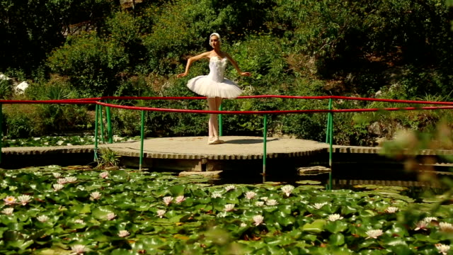 vídeos de stock, filmes e b-roll de fantasia de bailarina dança sobre o lago swan - teatro clássico