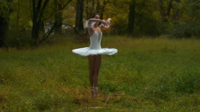 ballerina in tutu performing entrechat to passã© relevã© in nature - ニューパルツ点の映像素材/bロール