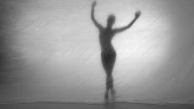 ballerina is dancing - ballet dancer stock videos & royalty-free footage