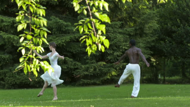 hd slow motion: ballet in the park - ballet dancing stock videos & royalty-free footage