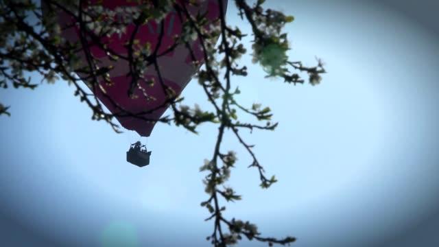 balloon flight - zweig stock-videos und b-roll-filmmaterial