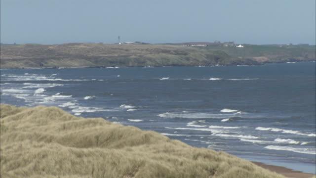 balmedie beach front waves from sea along coast sand marram grass along shore uk balmedie country park aberdeenshire - marram grass stock videos & royalty-free footage