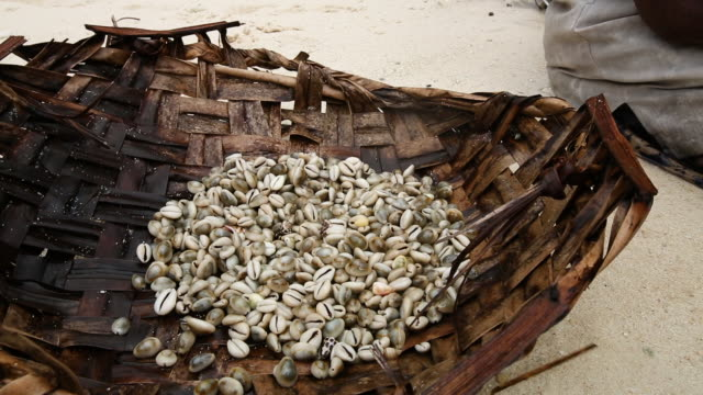 Bamboo basket of cowries, or sea snails, handheld medium close