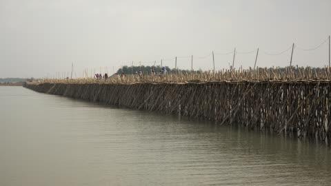 bamboo bridge and people crossing it on foot, motorbike or bicycle - 干潮点の映像素材/bロール