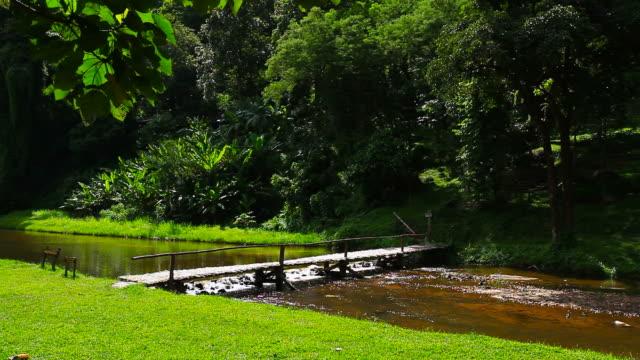 Ponte de Bambu