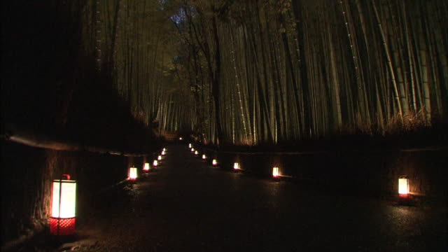 bamboo forest in arashiyama, kyoto - zona pedonale strada transitabile video stock e b–roll