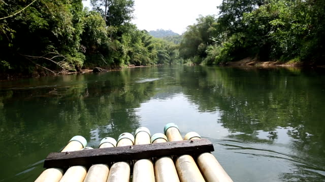 HD: Bamboo Rafting in jungle