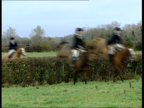ban to be upheld in england and wales; itn england: gloucestershire: ext gv members of vale of white horse hunt jumping hedge horse and rider along... - 18 23 months bildbanksvideor och videomaterial från bakom kulisserna