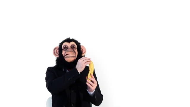 Banana Business Monkey