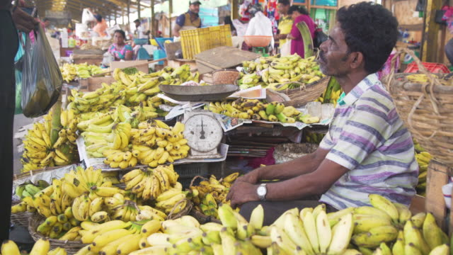 banana market stall at colombo, sri lanka - banana stock videos & royalty-free footage