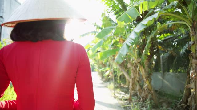 banana palms along plantation walkway mekong delta vietnam - 赤のドレス点の映像素材/bロール