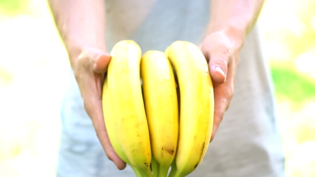 vídeos de stock, filmes e b-roll de banana - câmera lenta - orgânico