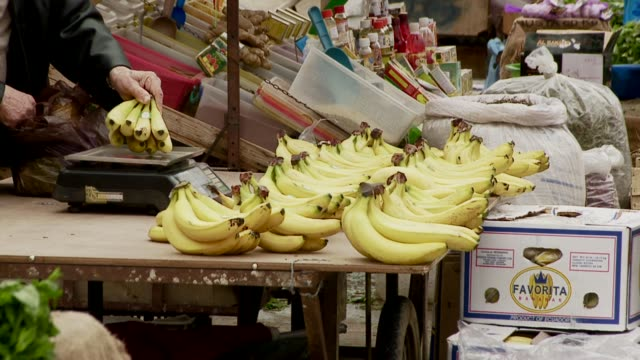 Bananas displayed on stall at outdoor market. Available in HD.