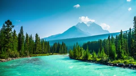 banff national park in kanada-bow river - banff nationalpark stock-videos und b-roll-filmmaterial