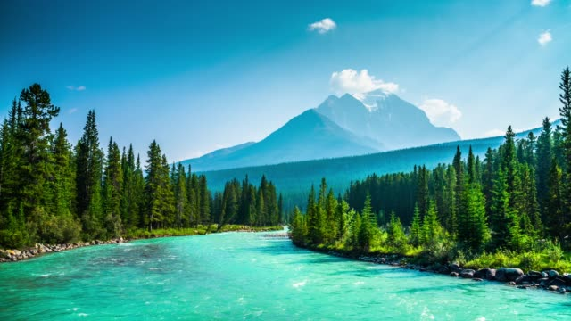 banff national park in canada - bow river - banff national park stock videos & royalty-free footage