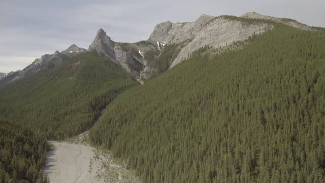 banff wilderness - banff stock videos & royalty-free footage