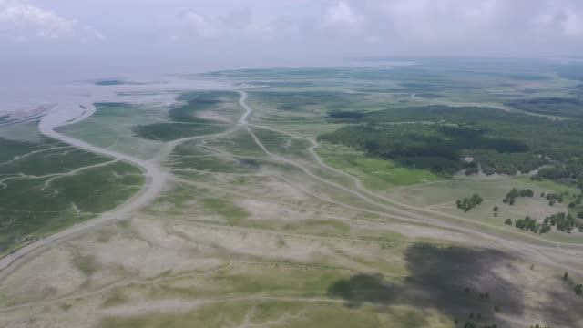 bangladesh has acquired several thousand square kilometres of new land over the last four decades owing largely to deltas forming on major rivers and... - shallow stock videos and b-roll footage
