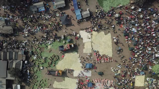 vídeos y material grabado en eventos de stock de bangladeshi people are busy with vegetable trading in a vegetable market in bogura district in bangladesh it's e biggest rural market in bangladesh... - bangladesh