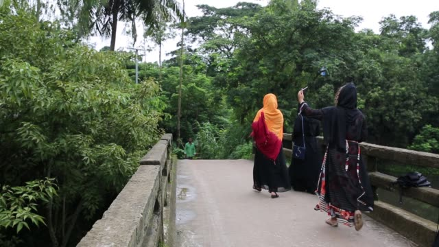 bangladeshi people walk on street in rural area near in dhaka bangladesh on july 27 2018 almost threequarters of the population live in rural areas... - wasserpflanze stock-videos und b-roll-filmmaterial