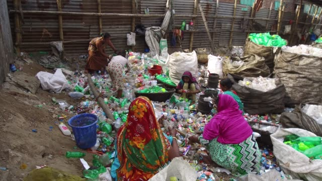 bangladeshi people work in a plastic bottle recycling factory in dhaka bangladesh on february 08 2018 after removing the labels and caps and... - plant part stock videos and b-roll footage