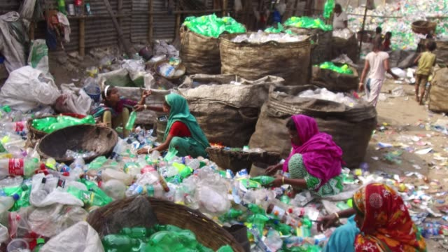 vídeos y material grabado en eventos de stock de bangladeshi people works in a plastic bottle recycling factory in dhaka bangladesh on february 08 2018 after removing the labels and caps and... - plant part