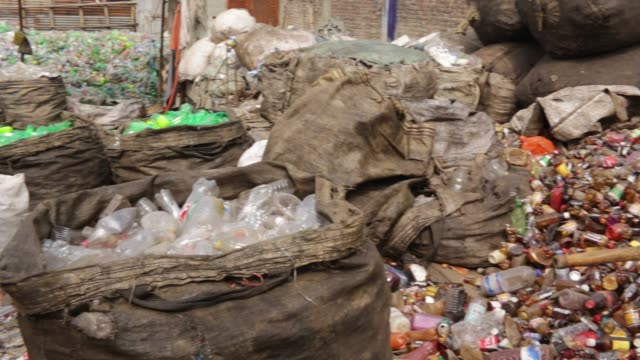 bangladeshi people works in a plastic bottle recycling factory in dhaka bangladesh on february 08 2018 after removing the labels and caps and... - plant part stock videos and b-roll footage