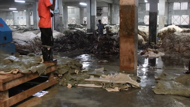 bangladeshi tannery workers process raw leather inside a factory at the tannery in hemayetpur of savar on the outskirts area of dhaka - bangladesch stock-videos und b-roll-filmmaterial