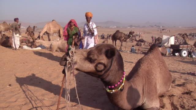 WS Banjaara family walking past camel while man plays string instrument at Pushkar Camel Fair / Pushkar, Rajasthan, India