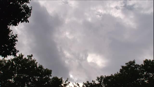 vidéos et rushes de a bank of gray clouds drifts above treetops. - météo