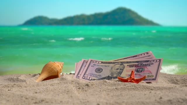 banknotes of 50 dollars on the beach at sunset. - conch stock videos & royalty-free footage