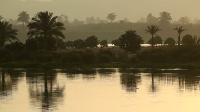 ws banks of the nile river/ cairo / egypt - riverbank stock videos & royalty-free footage