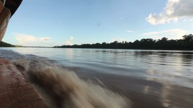 TS banks of the river Madre de Dios view from boat The region of Madre de Dios in SouthEastern Peru has been devastated by illegal gold mining it has...