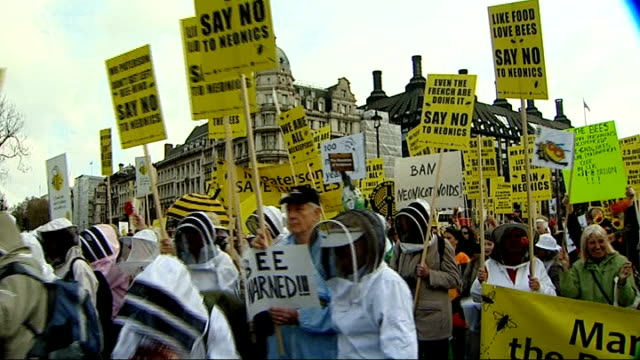 eu bans insecticides harmful to bees t26041336 / various of beekeepers marching through parliament square towards houses of parliament many carrying... - bee stock videos & royalty-free footage