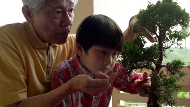 Banzai Generation Slow Motion