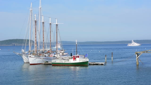 bar harbor maine harbor with whale watching tourist boats on water with ocean and sails masts - bar点の映像素材/bロール